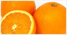 瀬戸内産 ネーブルオレンジ