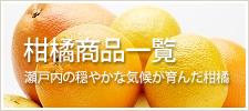 柑橘商品一覧